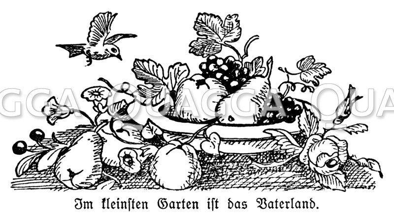 """Obstschale. Unterschrift: Im kleinsten Garten ist das Vaterland"""""""""""
