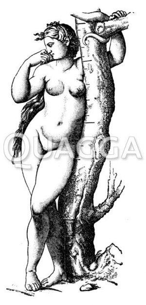 Eva von Raffael