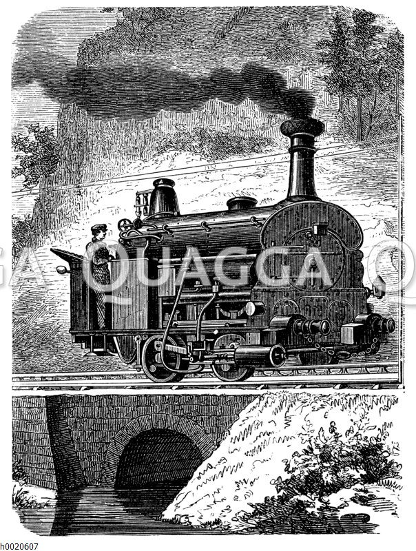 Berglokomotive von Fell