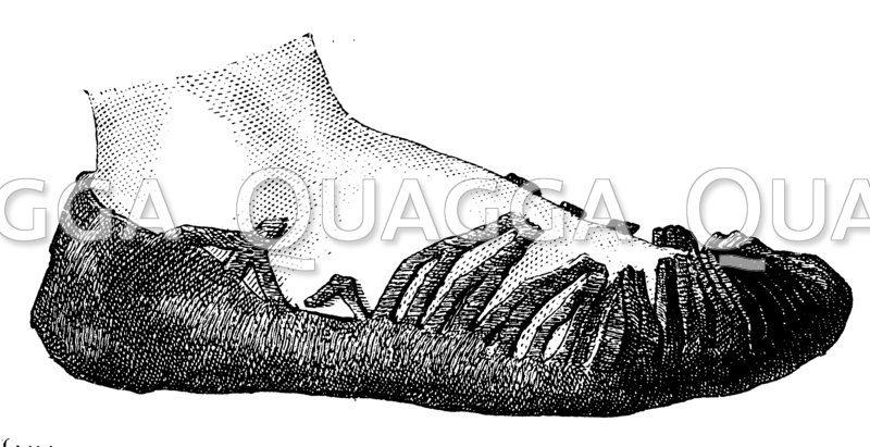 Schnürschuh aus Leder