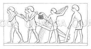 Ackerbau im alten Ägypten