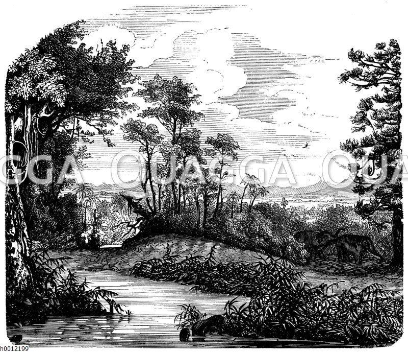 Landschaft aus der Braunkohlezeit