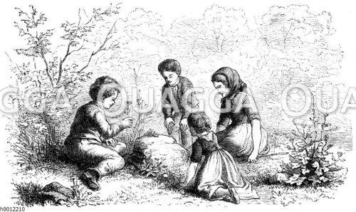Kinder beobachten eine Schnecke