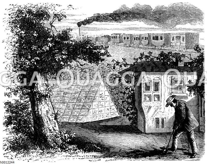 Garten mit Treibhaus