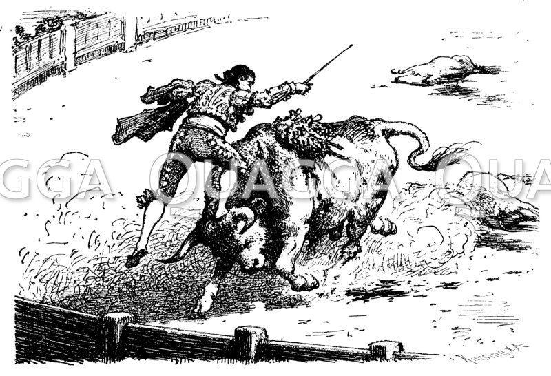 Stierkämpfer auf dem Boden im Kampf mit dem Stier