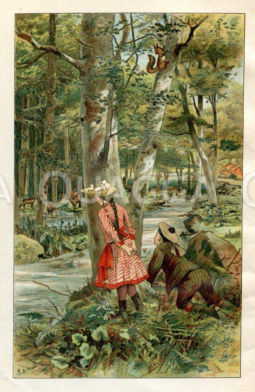 Kinder beobachten Rehe im Wald
