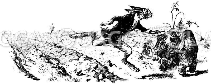 wettlauf zwischen hase und igel - quagga illustrations