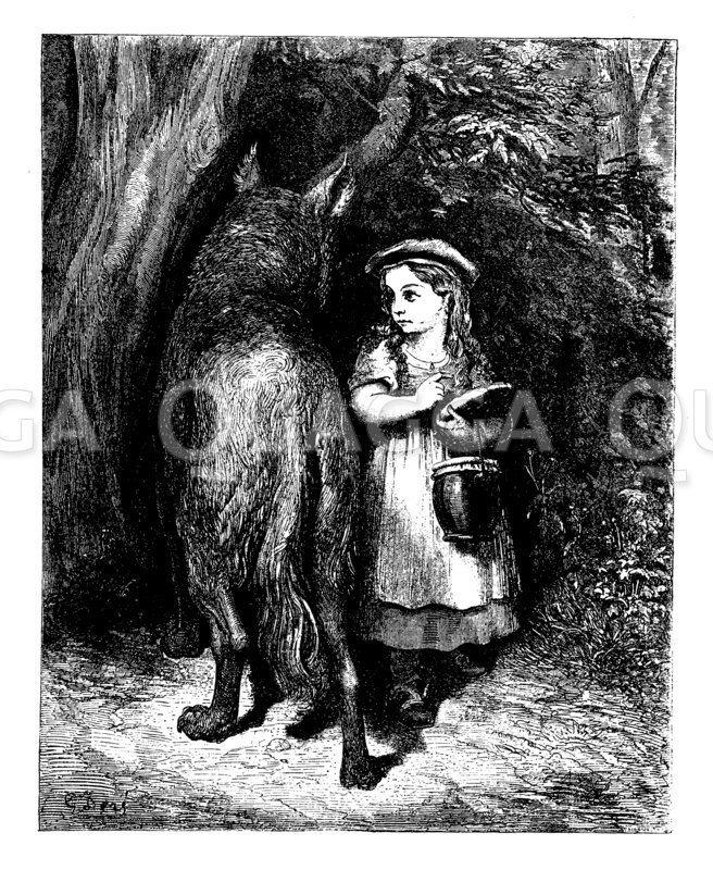 Rotkäppchen begegnet dem Wolf im Wald