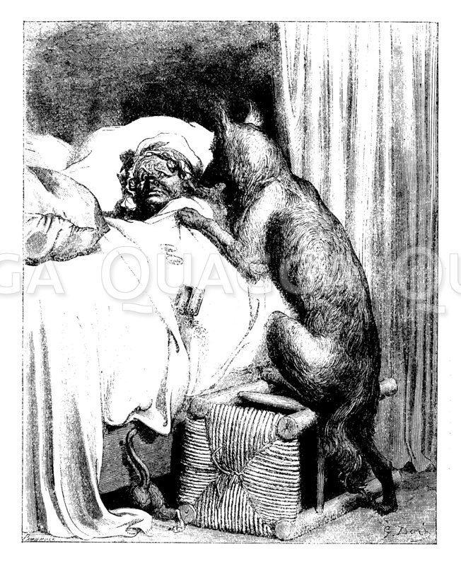Der böse Wolf frisst Rotkäppchens Großmutter
