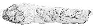 Löwe und Hirsch in einen Knochen geritzt