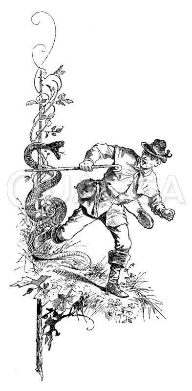 Jäger mit Schlange