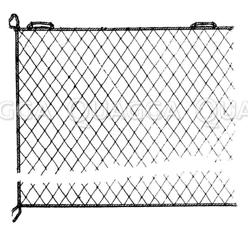 Einwandiges Kiemennetz