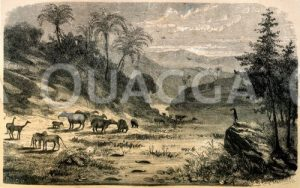 Landschaft des Eozän