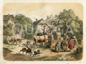 Bauernhof: Genrebild