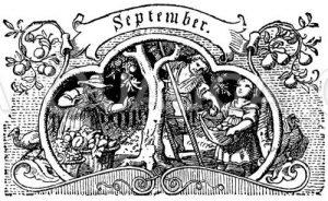 Vignette: September