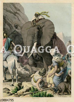 Hannibal überwindet die Alpen mit seinen Elefanten