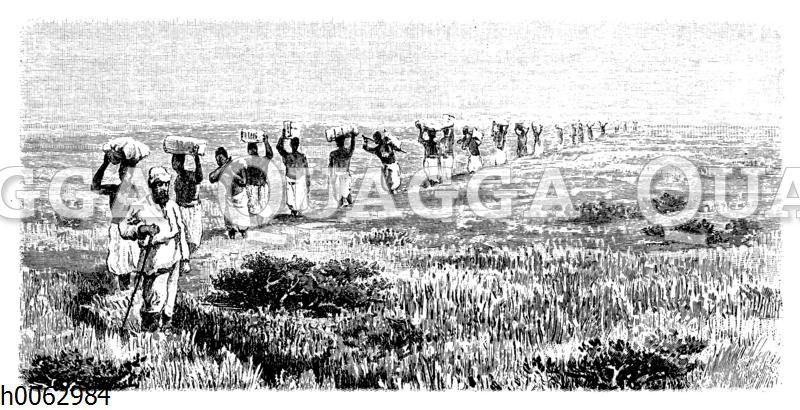 Ostafrikanische Trägerkarawane
