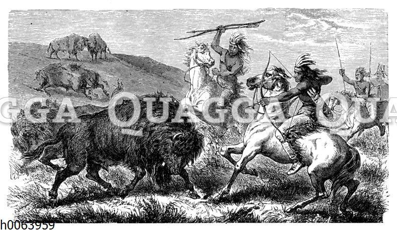 Büffeljagd bei nordamerikanischen Indianern