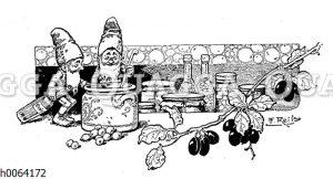 Kochbuchvignette: Marmeladen und Essig