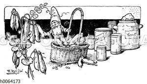 Kochbuchvignette: Einkochen