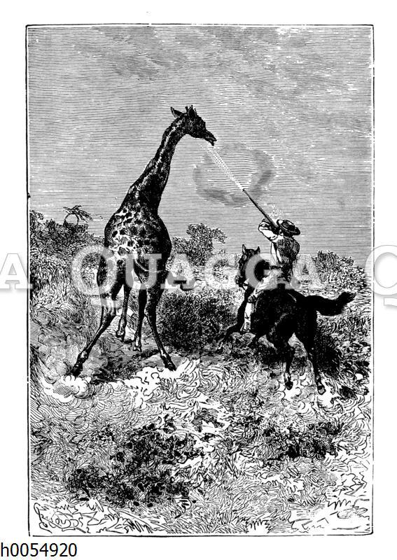 Jagd auf eine Giraffe