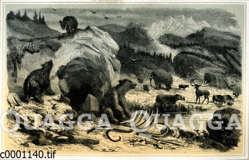 Landschaft der Mammutzeit
