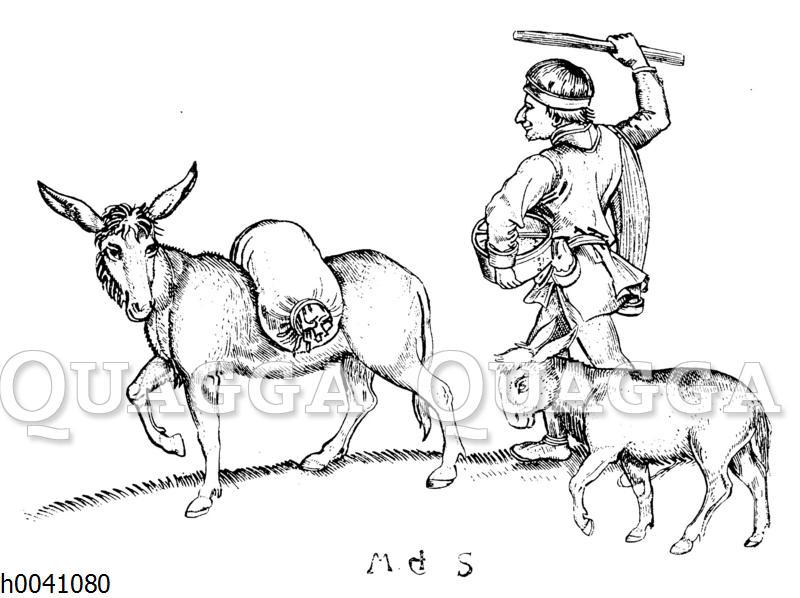 Mann und Esel auf dem Wege zur Mühle