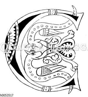 Buchstabe E aus einer Handschrift des Klosters St. Gallen