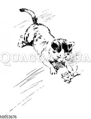 Katze fängt eine Maus