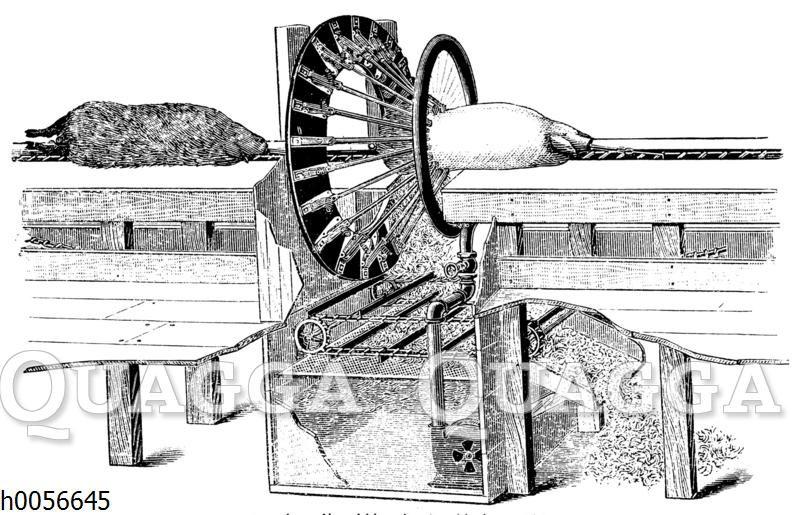 Amerikanische Borstenschabemaschine