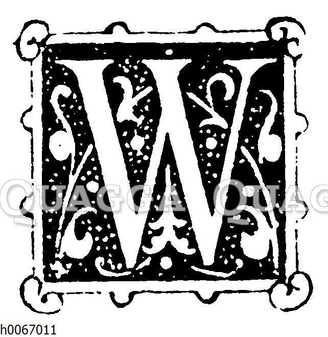 Buchstabe W
