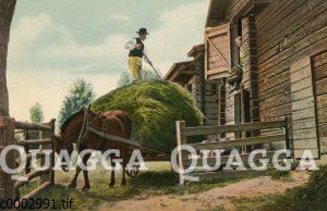 Bauer beim Heuabladen