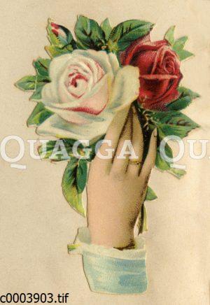 Hand mit Rosen