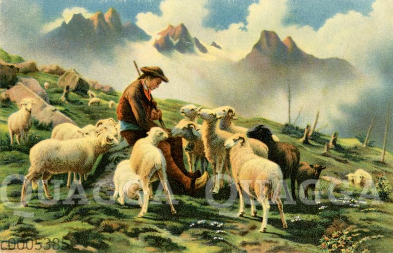 Schäfer mit seinen Schafen in den Pyrenäen