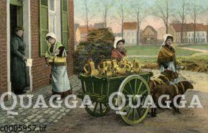 Milchhändlerinnen in Belgien