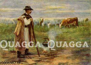 Rinderhirte in Ungarn