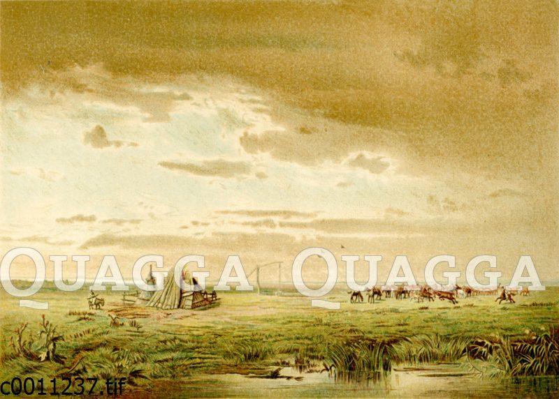 Landschaft der Puszta Hortobagy in Ungarn