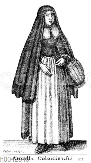 Ancilla Coloniensis