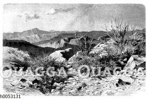 Stachelrasen und dornige Tragantsträucher auf der Hochsteppe bei Persepolis in Persien