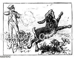 Jäger schießt Hasen