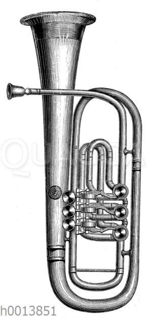 Tenorhorn (Aufrechte Form)