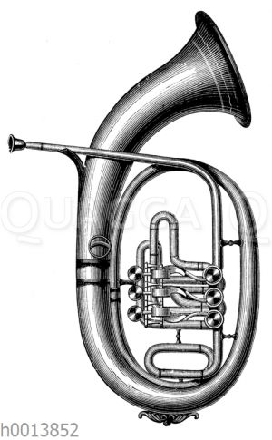 Tenorhorn (Österreichische Form)
