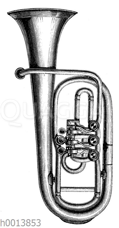 Althorn (Aufrechte Form)