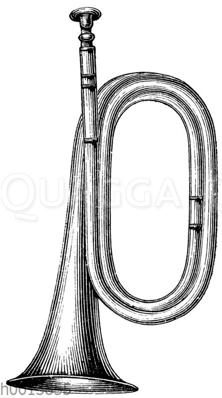 Signalhorn (kurze Form)