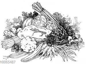 Stillleben mit Gemüse