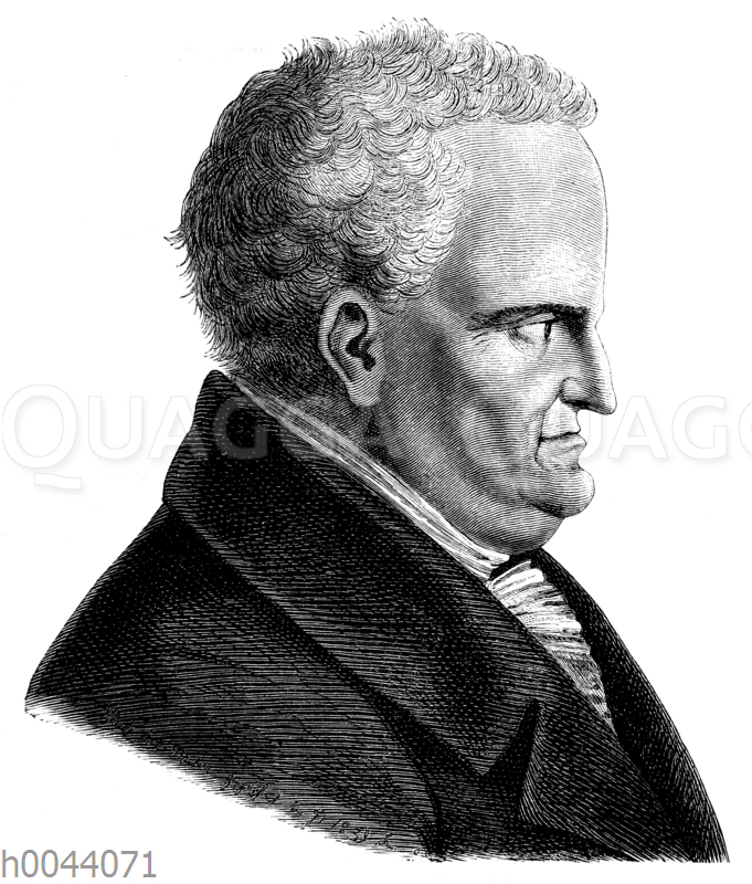 Johann Wolfgang von Goethe im Alter von 81 Jahren