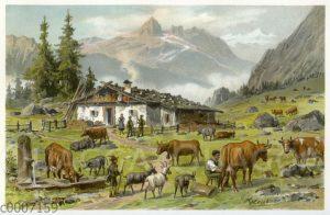 Almwirtschaft in den bayerischen Alpen
