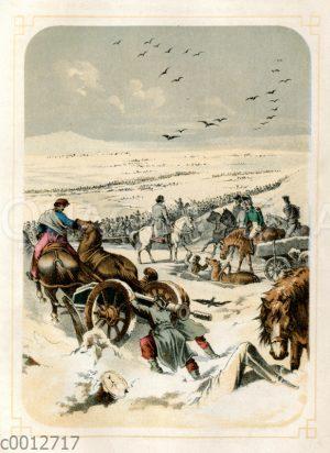 Napoleons Russlandfeldzug