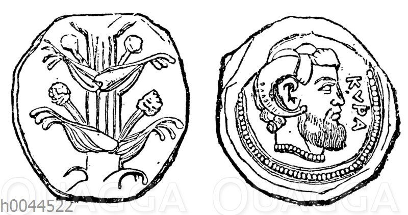 Tetradrachme von Kyrene mit dem Bild des Jupiter Ammon