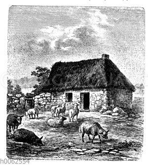 Irische Landwohnung